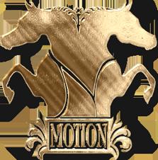NMotion Equestrian