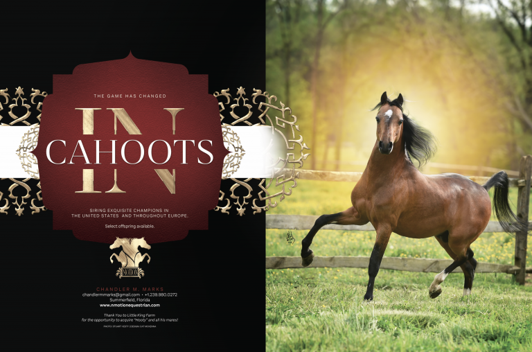 World & National Show Magazine Ads thumbnail picture